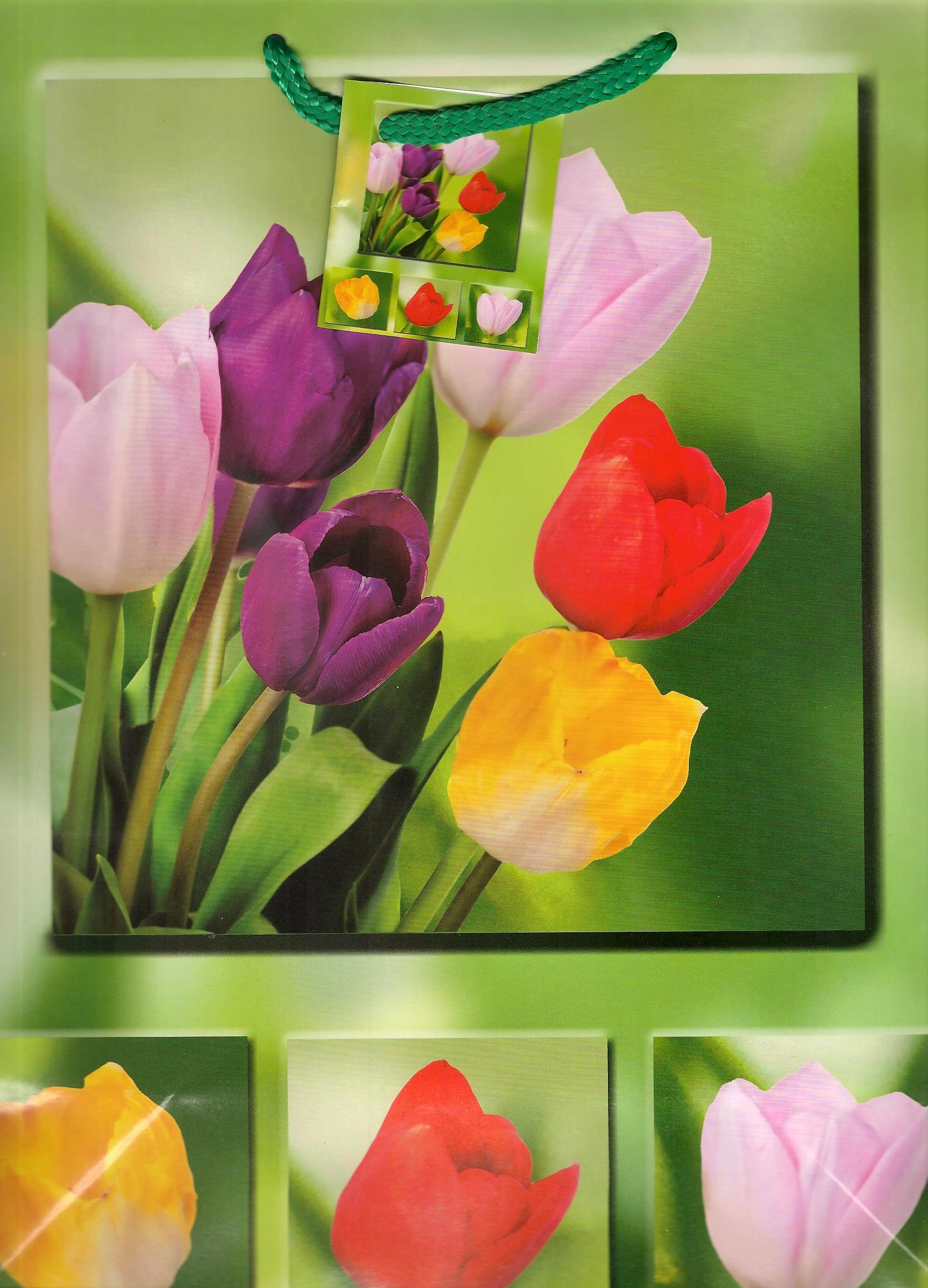 Nekupto dárková papírová taška střední 1048 50 BL tulipány 32,5 x 26 x 13 cm