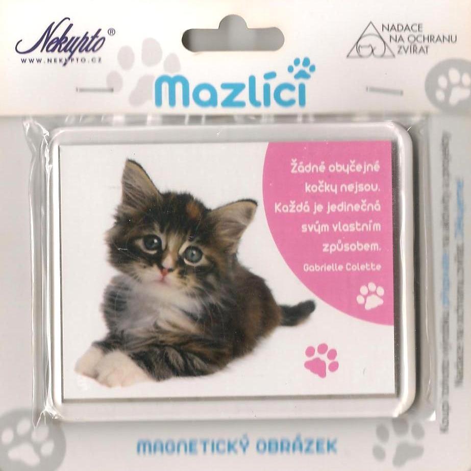 Nekupto Mazlíci magnetický obrázek 003 Kotě mourek