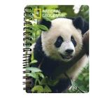 Prime3D Sešit A5 Panda 14,8 x 21 cm