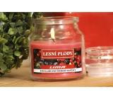 Lima Aroma Dreams Lesní plody aromatická svíčka sklenička s víčkem 300 g