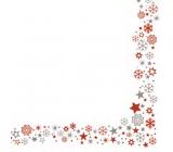 Ditipo Vánoční papírové ubrousky Vánoční vločky a hvězdičky 33 x 33 cm 3 vrstvé 20 kusů