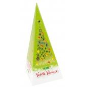 Liran Vánoční Černý čaj, jablko a skořice proti vysokém u tlaku, obezitě, infarktu, nachlezení, rakovině, infarktu 20 x 2 g