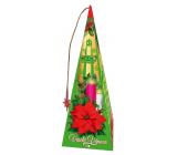 Liran Vánoční balení Med a skořice zelené čaje s příchutí 18 x 2 g