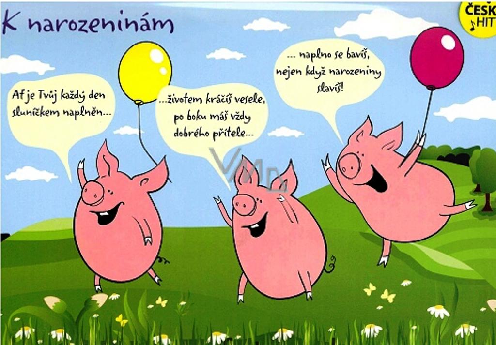přání k 14 narozeninám Albi Hrací přání do obálky K narozeninám Tři čuníci Jaromír  přání k 14 narozeninám