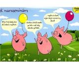 Albi Hrací přání do obálky K narozeninám Tři čuníci Jaromír Nohavica 14,8 x 21 cm