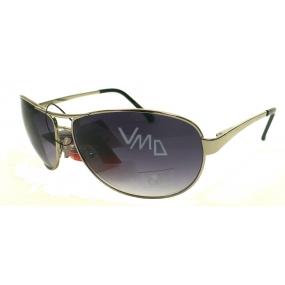 Fx Line Sluneční brýle 3003A