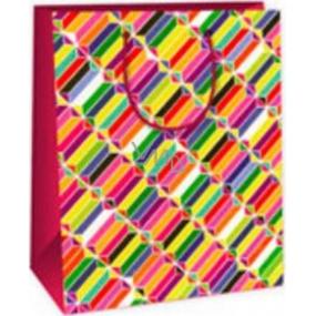 Ditipo Dárková papírová taška střední barevné obrazce 18 x 10 x 22,7 cm C
