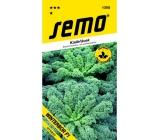 Semo Kadeřávek Winterbor F1 zelený 40 semen