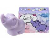 Kappus Slon toaletní mýdlo v krabičce 90 g