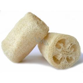 Lufa Cylindrica Přírodní masážní houba střední 12,5 cm