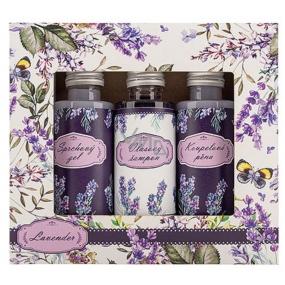 Bohemia Gifts & Cosmetics Levandule sprchový gel 50 ml + šampon 50 ml + pěna 50 ml, kosmetická sada