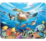 Prime3D magnet - Mořské želvy 9 x 7 cm