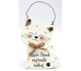Nekupto Mazlíčci Dřevěná cedulka Pozor! Šíleně roztomilá kočka 12 x 8,5 cm