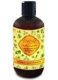 Ryor Pivnní osvěžující sprchový gel šetrný ke všem typům pokožky včetně suché 250 ml