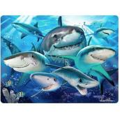 Prime3D pohlednice - Žralok Selfie 16 x 12 cm