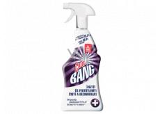 Cillit Bang Bleach & Hygiene univerzální čistič pro bělení a čistotu 750 ml rozprašovač