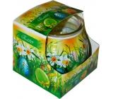 Admit Easter Green dekorativní aromatická svíčka ve skle 80 g