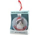 Albi Skleněná vánoční ozdobička se zvířátky - Černobílá kočka 7,5 cm x 8 cm x 3,6 cm