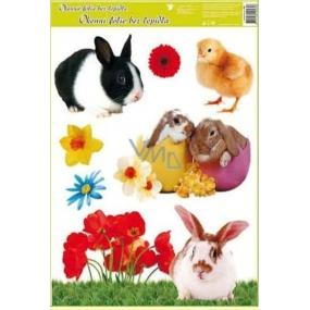 Room Decor Okenní fólie bez lepidla velikonoční živá králíci a kuře 42 x 30 cm