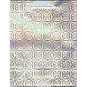 Nekupto Dárková papírová taška střední 23 x 18 x 10 cm Stříbrná hologramová 050 02 THM