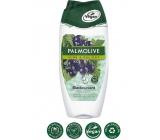 Palmolive Pure Blackcurrant sprchový gel 250 ml
