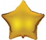 Albi Nafukovací znak Hvězda 49 cm