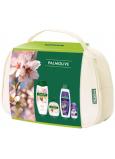 Palmolive Naturals Milk & Almond sprchový krém 500 ml + Milk & Almond tekuté mýdlo 300 ml + Softly Liss šampon na vlasy 350 ml + Lady Speed Stick Fresh & Essence antiperspirant roll-on 50 ml, kosmetická sada