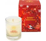 English Soap Merry Christmas - Veselé Vánoce sojová vonná svíčka 170 ml, hoří až 35 hodin