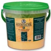 Drutep Rochova sůl PI 1 kg kbelík