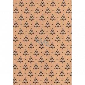 Ditipo Dárkový balicí papír 70 x 200 cm Vánoční KRAFT černé stromečky a hvězdičky