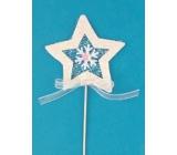 Hvězda zápich 6 cm + drátek