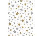Ditipo Dárkový balicí papír 70 x 500 cm Bílý zlaté a stříbrné hvězdičky