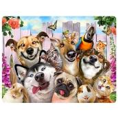 Prime3D pohlednice - Zvířecí Selfie 16 x 12 cm