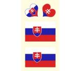 Arch Tetovací obtisky na obličej i tělo Slovensko vlajka 3 motiv