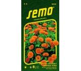 Semo Měsíček lékařský Orange King oranžový 1 g