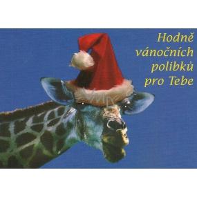 Nekupto Pohlednice Vánoční-Hodně polibků