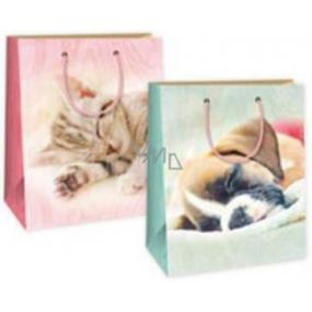Ditipo Dárková papírová taška střední kočička, pejsek 18 x 10 x 22,7 cm DC
