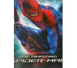 Ditipo Dárková papírová taška pro děti L Spiderman 32 x 12 x 26 cm 2928 003