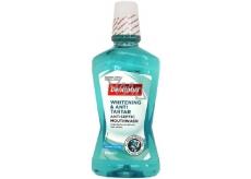 Dentiplus Whitening antiseptická bělící ústní voda s příchutí čerstvé máty, bez alkoholu 500 ml