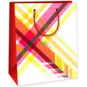 Ditipo Dárková papírová taška střední bílá - barevné káro 18 x 10 x 22,7 cm DC
