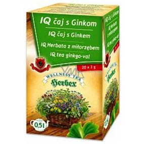 Herbex IQ čaj s ginkem zvyšuje odolnost proti stresu 20 x 3 g