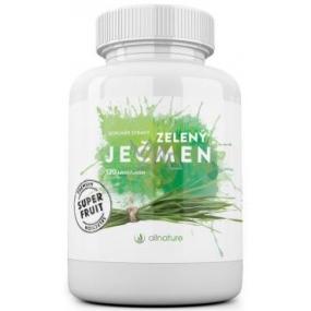 Allnature Zelený ječmen tablety 120 kusů