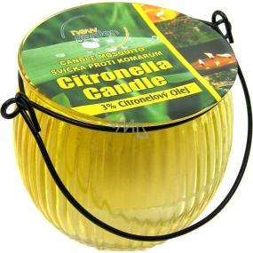 New Garden Bludička svíčka proti komárům skleněná 70 g