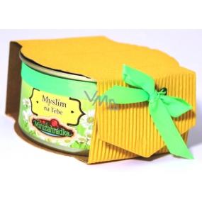 Albi Minizahrádka Kopretina plechovka dárkové balení sady na pěstování květin