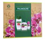 Palmolive Naturals Orchid & Milk sprchový krém 250 ml + Milk & Orchid tekuté mýdlo 300 ml + Luxurious Softness antiperspirant roll-on 50 ml, kosmetická sada