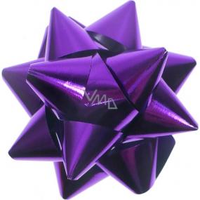 Nekupto Hvězdice velká metal fialová HY 15633 8 cm