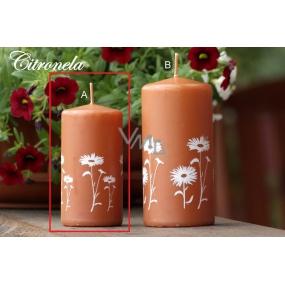 Lima Citronela svíčka proti komárům vonná repelentní s motivem květin skořicová válec 50 x 100 mm