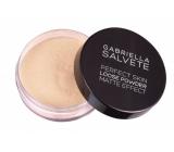 Gabriella Salvete Loose Powder sypký matující pudr 01 6,5 g