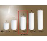 Lima Gastro hladká svíčka bílá válec 80 x 200 mm 1 kus