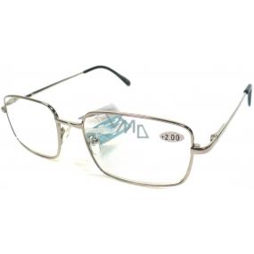 Berkeley Čtecí dioptrické brýle +2,0 stříbrné kov MC2 1 kus ER5050